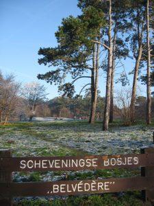 31951-belvedere-scheveningse-bosjes-2007-kopie